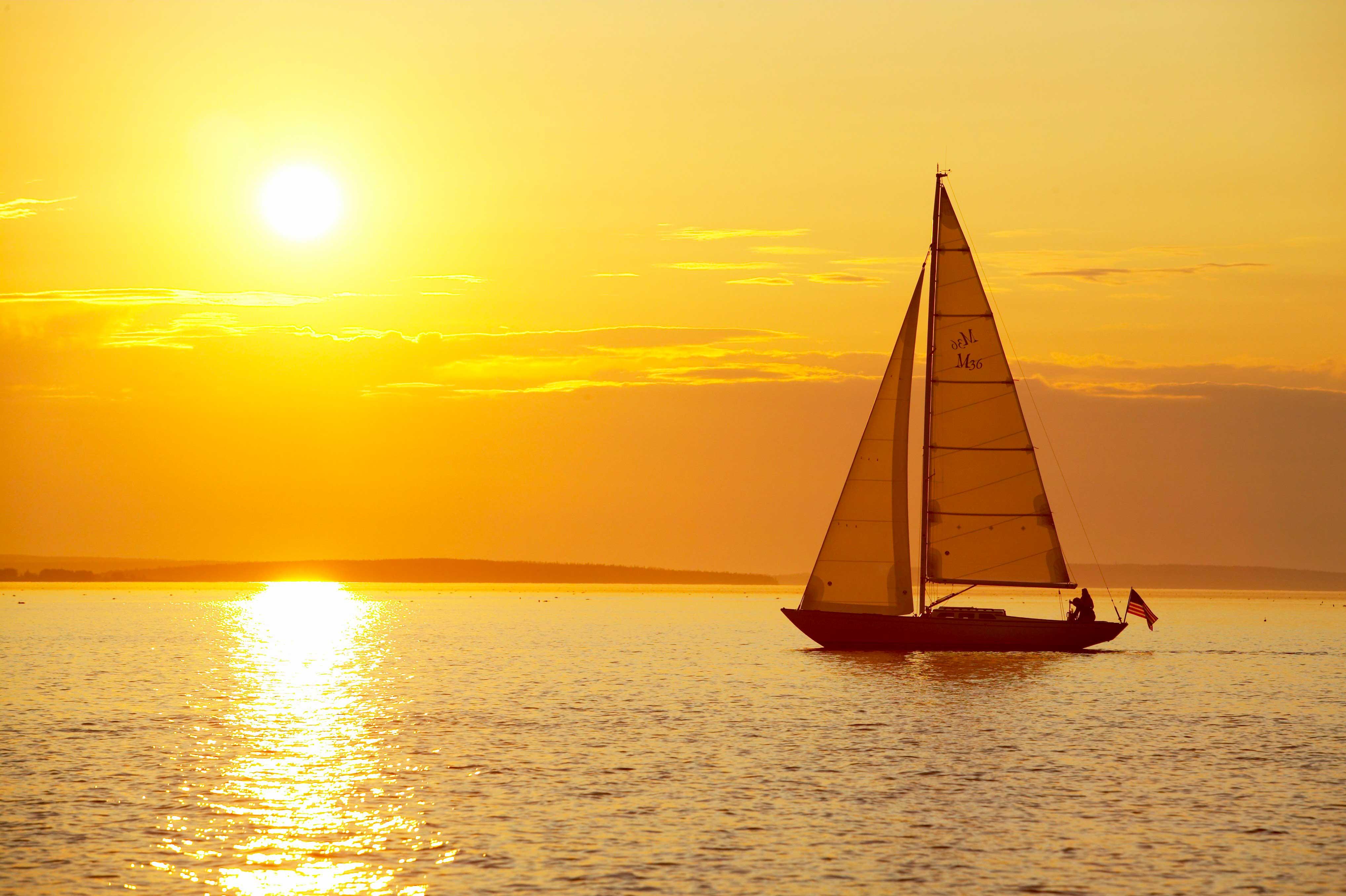 Morris-Yachts-M36-Web